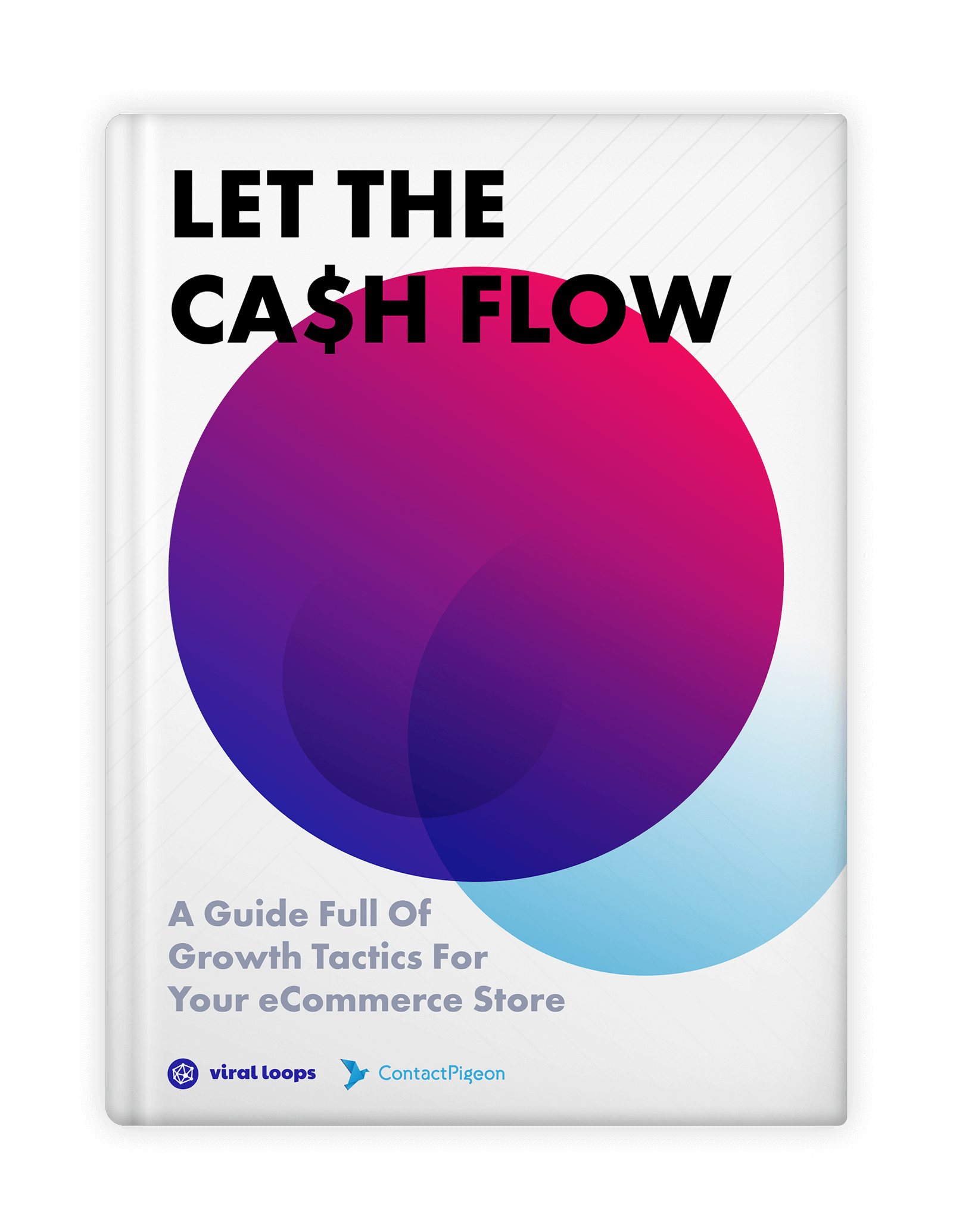 let-the-ca$h-flow-ebook-1-1-mockup-tiny