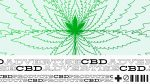 Marketing a CBD brand without paid advertising